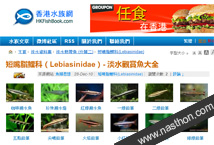 香港水族網